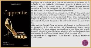 LaSoumise3