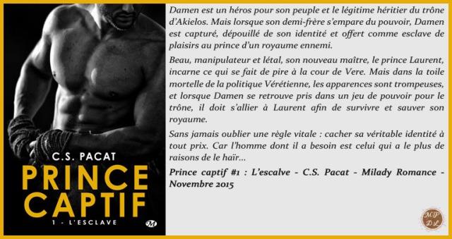 PrinceCaptif1