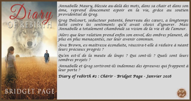DiaryOfRebirth2