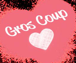 GrosCoupCoeur2016