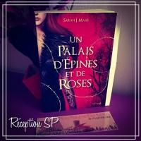 reception-sp-un-palais-d-epine-et-de-roses