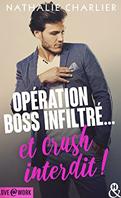 operation_boss_infiltre_et_crush_interdit-1497475-66-108